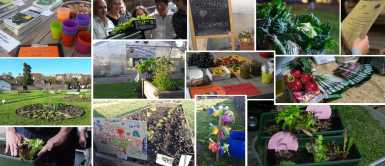 LOW ENERGY LOTS*IN in Garten und Ernährung